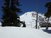 Seattle Greeting Cards Prints - Peak of Mt Hood Oregon Print by Glenna McRae