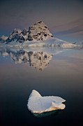 Snow-covered Landscape Prints - Peak On Wiencke Island Antarctic Print by Colin Monteath