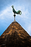 Weather Vane Prints - Peaked Rooster Print by Christopher Holmes