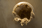 Peanut Photos - Peanut Butter - Empty glass by Matthias Hauser