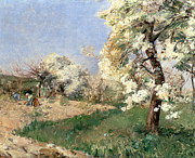 Tree Blossoms Paintings - Pear Blossoms by Childe Hassam