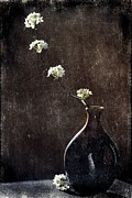 Christine Annas Posters - Pear Blossoms in Shadow and Light Poster by Christine Annas