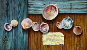 Shells Paintings - Pearl of Great Price by John Lautermilch