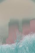 Susi Perla - Pearly Haze