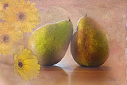 Fruit Still Life Digital Art Posters - Pears and flowers Poster by Betty LaRue