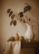Colleen Farrell - Pears and White Pitcher