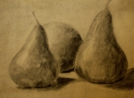 Pears Drawings Framed Prints - Pears Framed Print by Faith Harron Boudreau