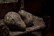 Decaying Prints - Pears on a Chair I Print by Tom Mc Nemar