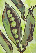 Peas Prints - Peas Print by Sandy Tracey
