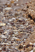 Pebbles Photos - Pebble Beach by Douglas Barnard