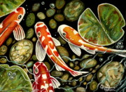 Outdoors Pastels Framed Prints - Pebbles and Koi Framed Print by Elizabeth Robinette Tyndall