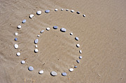 Creativity Art - Pebbles arranged in spiral shape on beach by Sami Sarkis