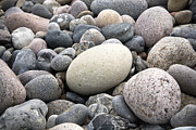 Natural Framed Prints - Pebbles Framed Print by Frank Tschakert