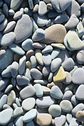 Smoothed Posters - Pebbles On A Beach Poster by David Aubrey