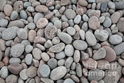 Smoothed Posters - Pebbles On Beach Poster by Ted Kinsman