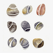 Pebbles Prints - Pebbles Three by Three Print by Amanda Makepeace