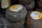 Cheeses Photo Posters - Pecorino Cheese of Italy Poster by Roger Mullenhour