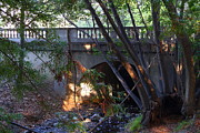 College Campuses Framed Prints - Pedestrian Bridge And Strawberry Creek  . 7D10132 Framed Print by Wingsdomain Art and Photography