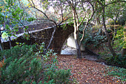 Creeks Prints - Pedestrian Bridge And Strawberry Creek  . 7D10150 Print by Wingsdomain Art and Photography