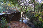 Schools Photos - Pedestrian Bridge And Strawberry Creek  . 7D10152 by Wingsdomain Art and Photography