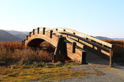 Arched Bridge Photos - Pedestrian Bridge At Martinez Regional Shoreline Park in Martinez California . 7D10506 by Wingsdomain Art and Photography