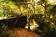 Cal Bear Metal Prints - Pedestrian Bridge At Strawberry Creek  . 7D10152 . Painterly Metal Print by Wingsdomain Art and Photography