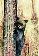 Boo Framed Prints - Peek A Boo Bear Framed Print by Morgan Fitzsimons
