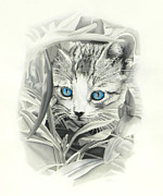 Cute Kitten Pastels Prints - Peeking Kitten Print by Paul Miners