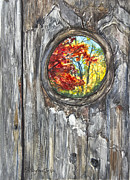 Knothole Prints - Peeky Hole Through The Fence I Print by Patricia Allingham Carlson