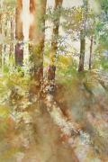 Peeping Sun Print by Marlene Gremillion