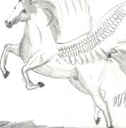 Pegasus Print by Maddi Pollihan
