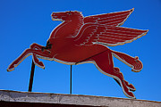 Mythological Photo Prints - Pegasus oil sign Print by Garry Gay