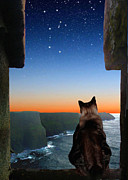 Constellations Digital Art Prints - Pegasus Over the Cliffs of Moher Print by Kathleen Horner