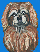 Pekingese Framed Prints - Peke for You Framed Print by Ania M Milo