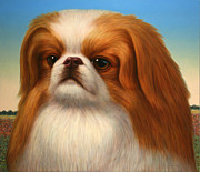 Animal Framed Prints - Pekingese Framed Print by James W Johnson