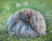 Pekingese Framed Prints - Pekingese Framed Print by Lee Ann Shepard