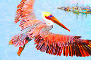 Wings Domain Art - Pelican Flying Back To The Docks by Wingsdomain Art and Photography