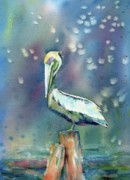 Pelican Drawings Metal Prints - Pelican Metal Print by Mary Haley-Rocks