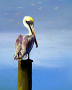 Acrylic Seascape Digital Art Posters - Pelican Perch Poster by Suni Roveto