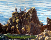 Lori Quarton Art - Pelican Rock by Lori Quarton