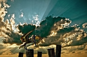 Timber Posts Prints - Pelican Sky Print by Meirion Matthias