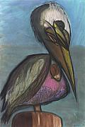 Sea Shore Pastels Prints - Pelican Print by Stu Hanson