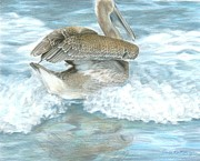 Pelican Painting Originals - Pelican Surf by Carla Kurt