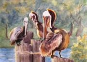 Setting Mixed Media Framed Prints - Pelican Town Meeting  Framed Print by Barbara Jung