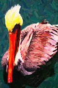 Wings Domain Digital Art Prints - Pelican Wading In Water Print by Wingsdomain Art and Photography