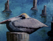 Wendie Thompson - Pelican