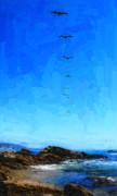 Sea Birds Digital Art - Pelicans Over Laguna Beach by Ron Regalado