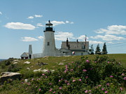 Pemaquid Lighthouse Framed Prints - Pemaquid Lighthouse Framed Print by Theresa Willingham