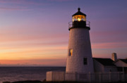 Maine Lighthouses Posters - Pemaquid Point Lighthouse Poster by John Greim