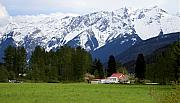 Red Roof Photos - Pemberton Farm in Spring  by Pierre Leclerc